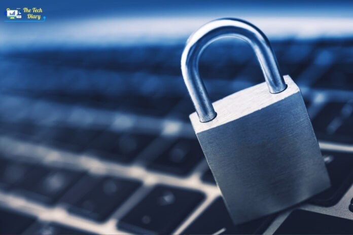 Top 5 Kinds of Cyber Crime